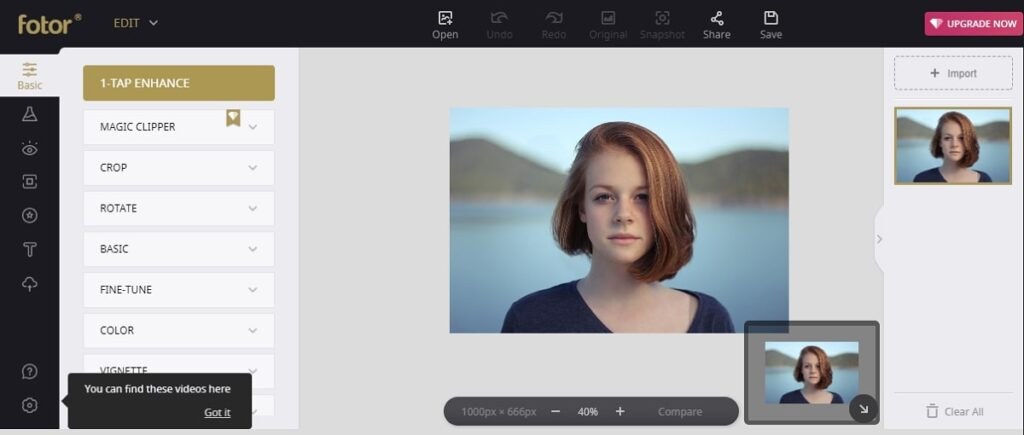 Fotor- free online photo editor