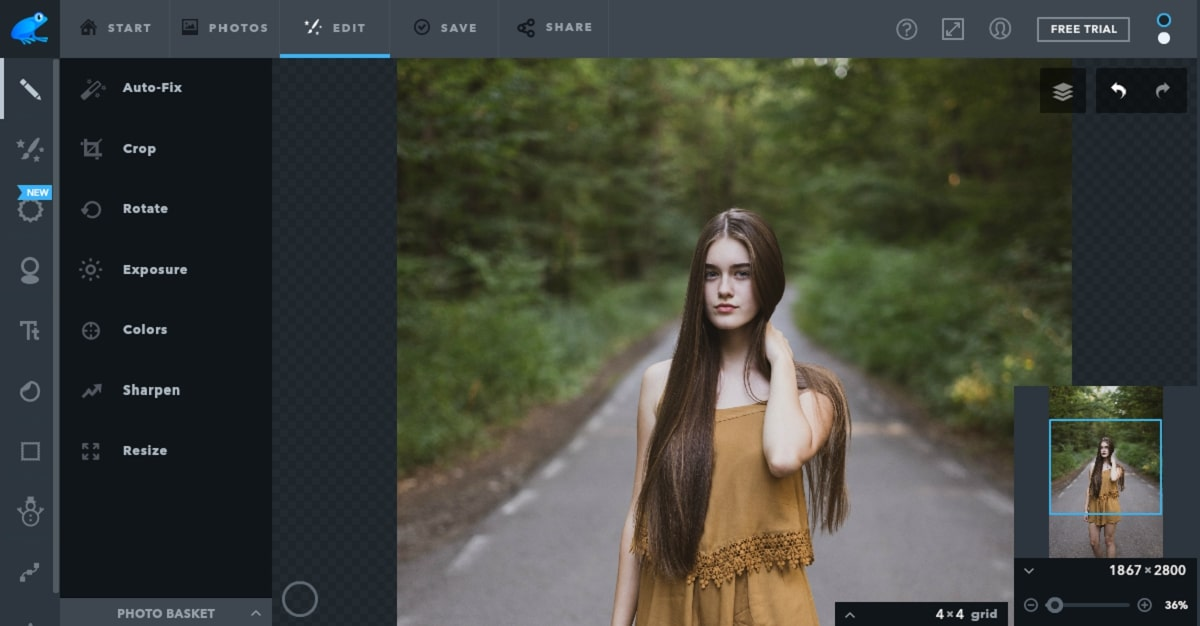 ribbet-online photo editor
