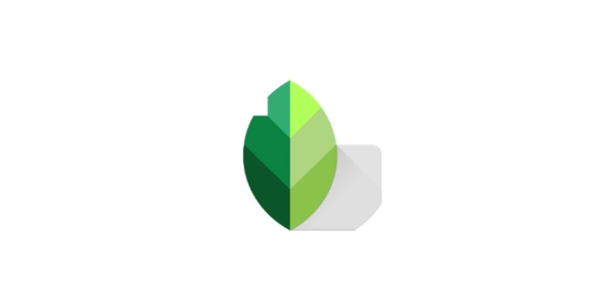 Snapseed- best app to remove unwanted objects from photo on Android