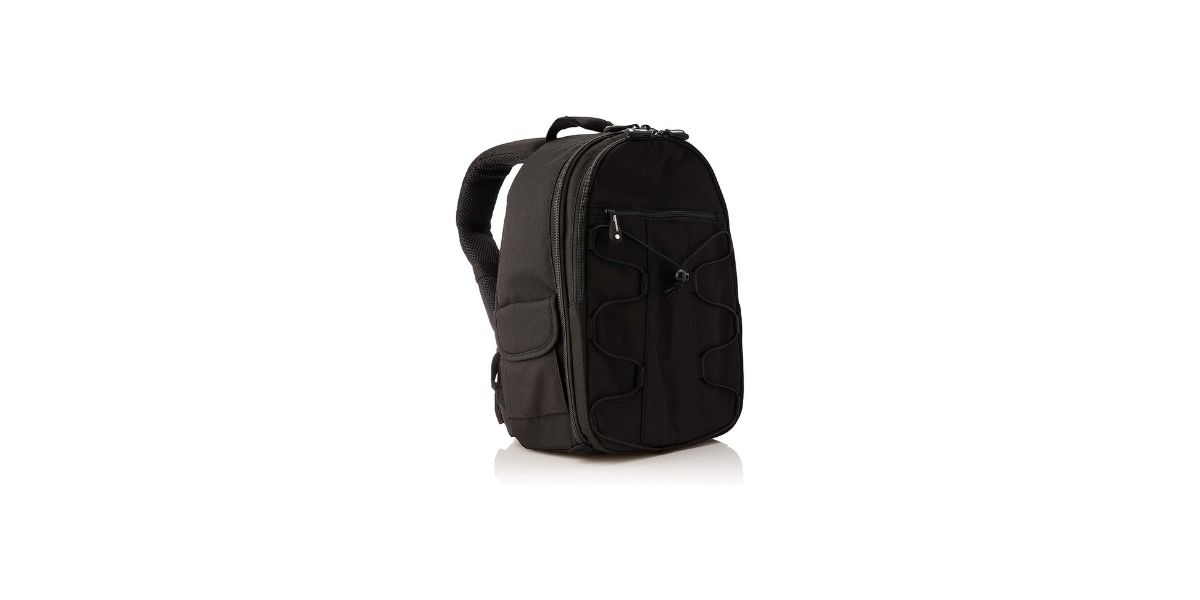Amazon Basics Backpack for SLR Cameras